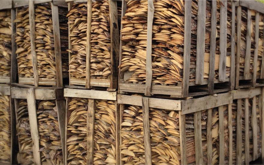 Drewno opałowe ikominkowe
